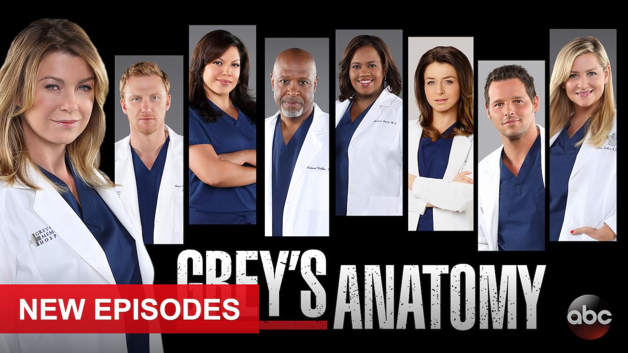 Grey's Anatomy on Netflix USA