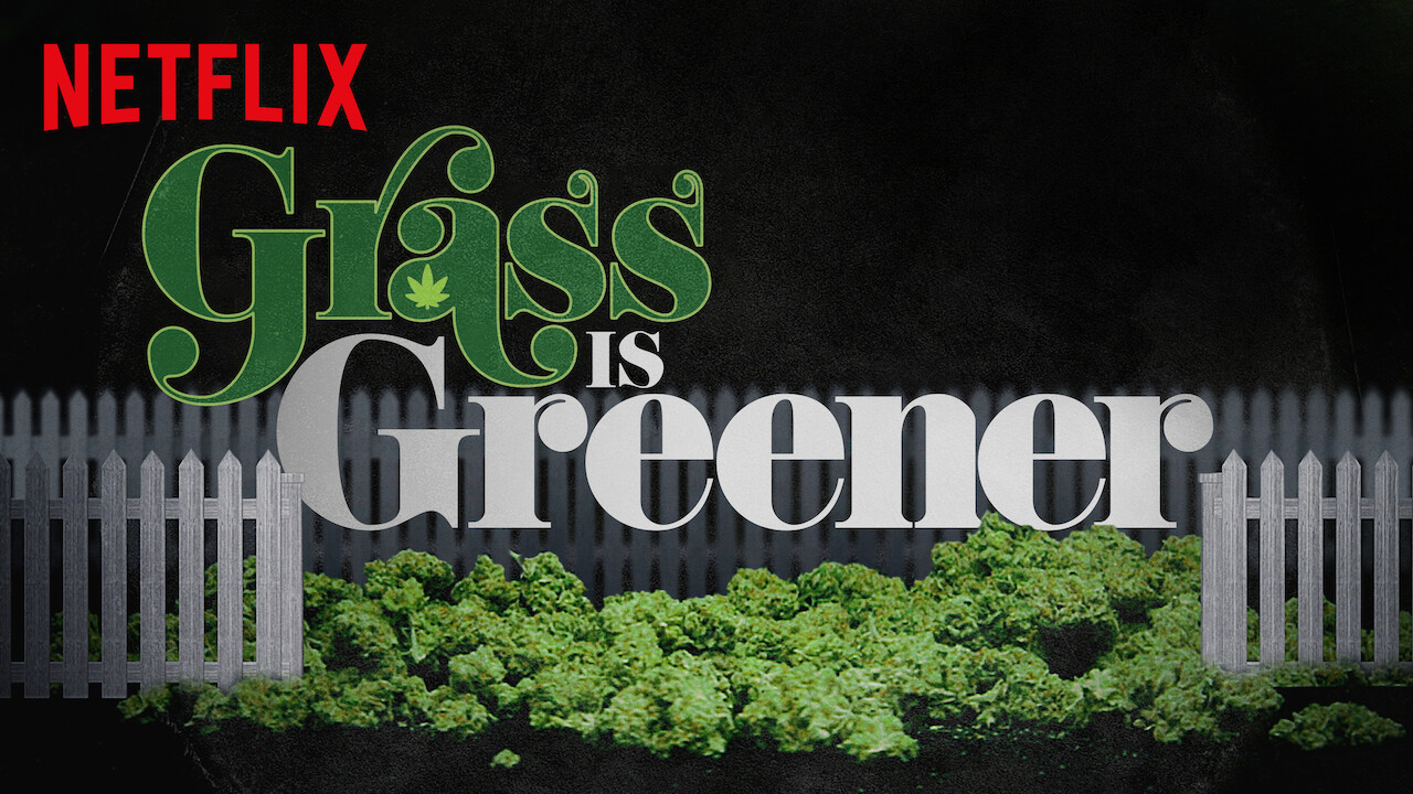 is  u0026 39 grass is greener u0026 39  available to watch on netflix in