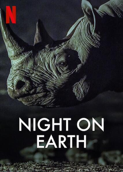 Night on Earth on Netflix USA
