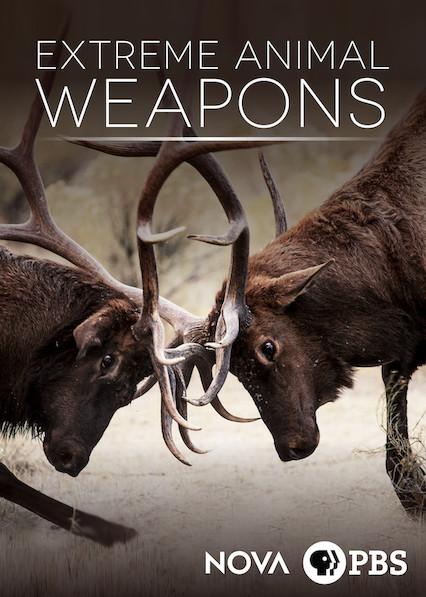 NOVA: Extreme Animal Weapons