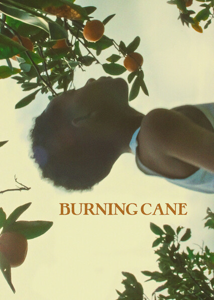 Burning Cane on Netflix USA