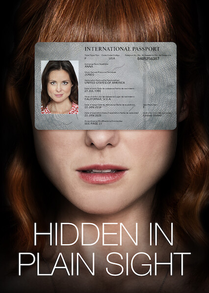 Hidden in Plain Sight on Netflix USA