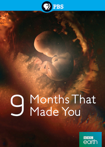 9 Months That Made You